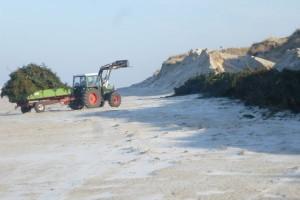 Das LKN fährt Baukronen an den Strand...